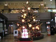 narita-tree2400